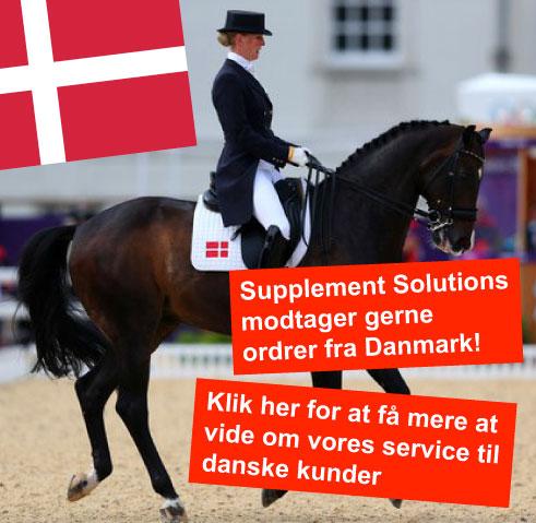 Danish Services