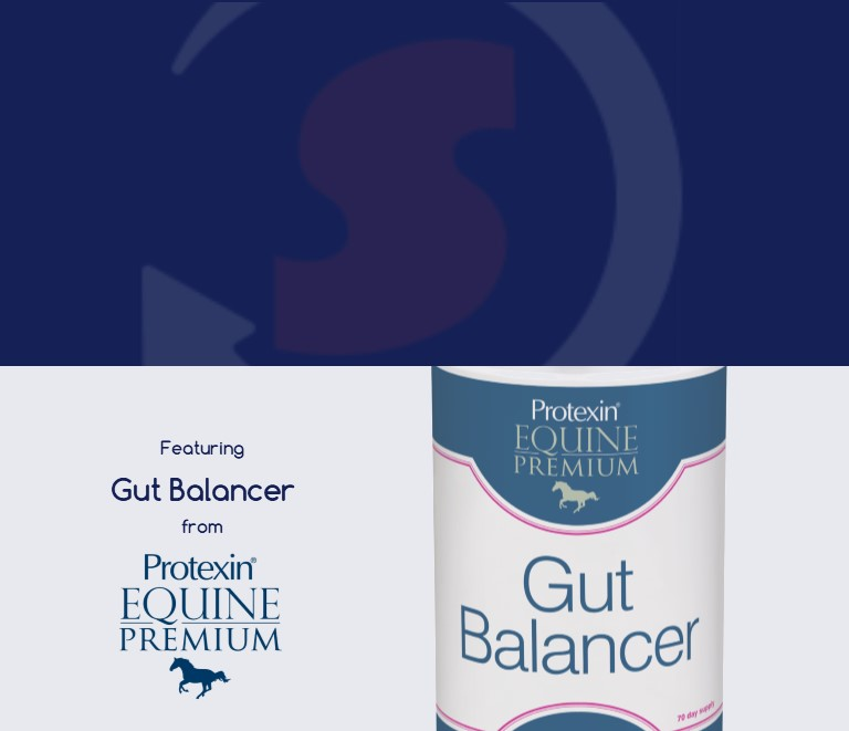 Hind Gut Support