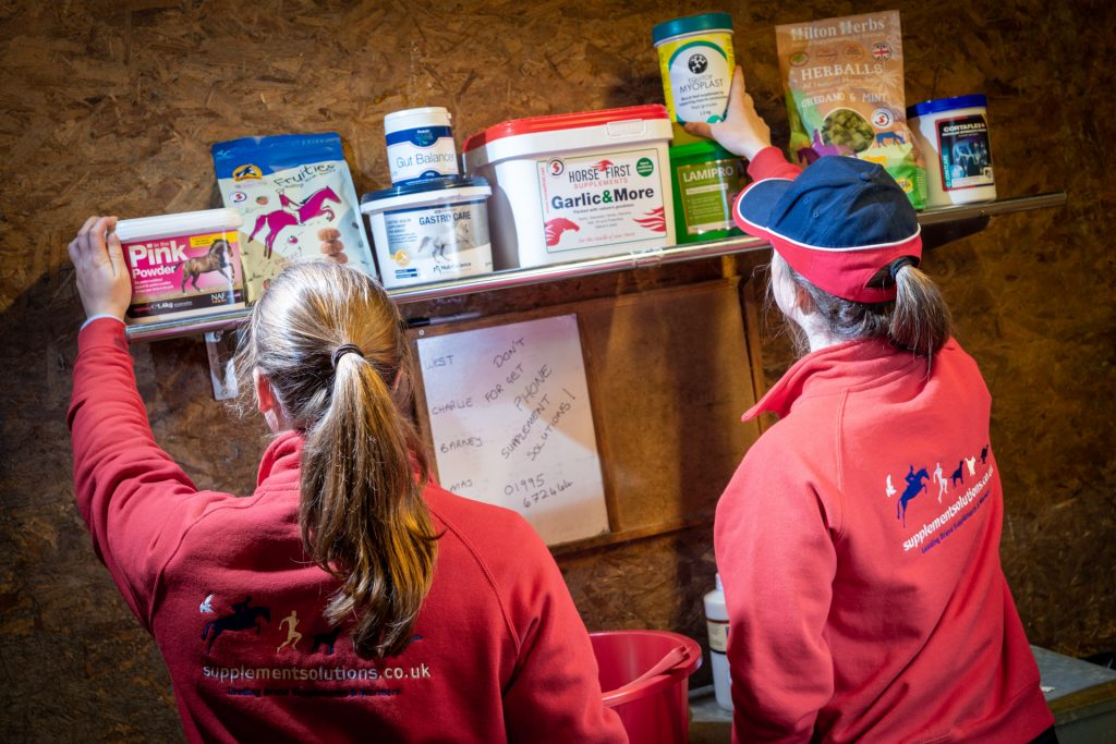 Selecting horse supplements in the feed room