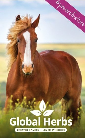 Global Herbs horse supplements