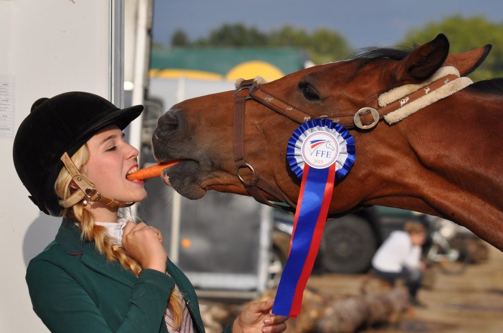 Horse and rider share a carrot at a competition